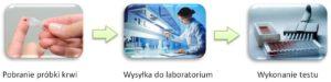 logistyka badań laboratoryjnych