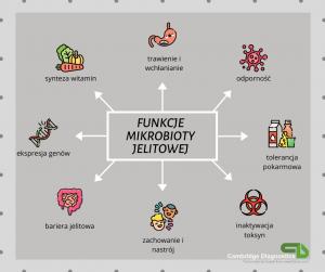 mikrobiota-co-to-jest